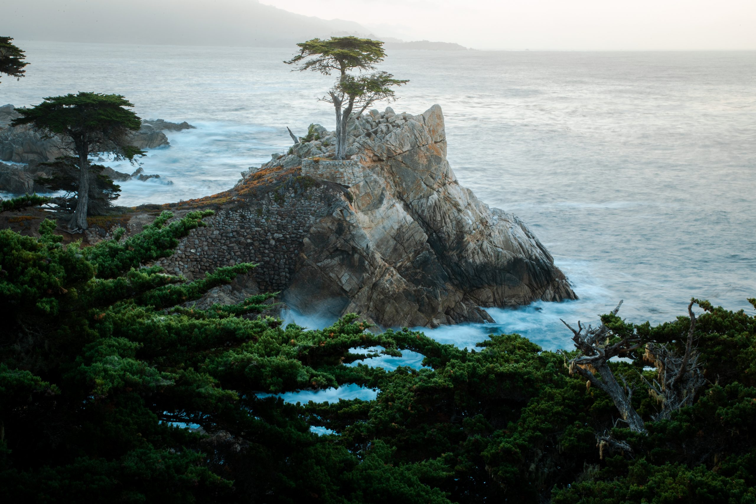 The Lone Cypress is a Monterey cypress tree in Pebble Beach, California. Standing on a granite hillside off the 17-Mile Drive, the tree is a Western icon. The photo was taken aerially from a drone.